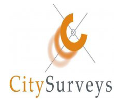 city-surveys